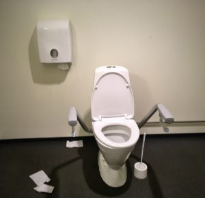 Disabled toilet with paper mounted like a lightyear away from the actual bog