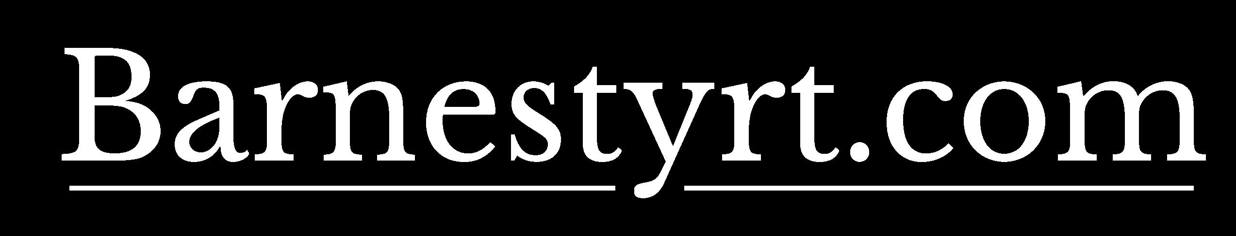 Barnestyrt.com